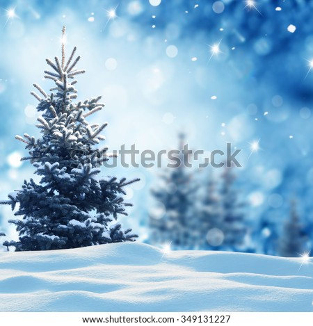 Christmas winter background with fir tree and blurred bokeh - stock photo