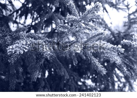 Christmas winter landscape in the forest - stock photo