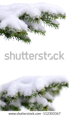 Christmas winter snowy background with spruce branch - stock photo