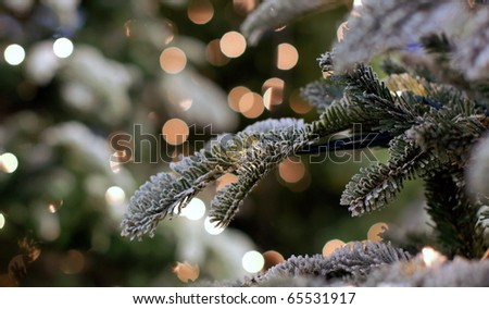 christmastree covered with snow - stock photo