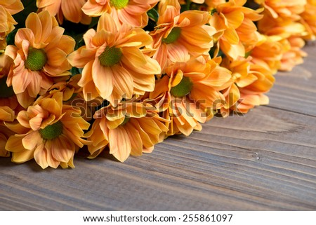 chrysanthemums bouquet on wooden background. - stock photo
