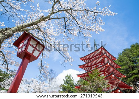 Chureito Pagoda with cherry blossums in spring, Fujiyoshida, Japan - stock photo