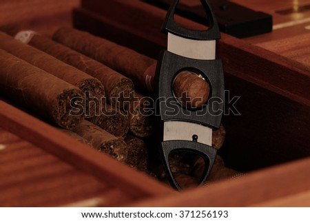 Cigar and Cigar Cutter on Wooden Background  - stock photo