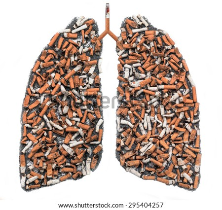 Cigarette butts and ash in the form of pulmonary contour on white background, as a symbol of the campaign against smoking - stock photo