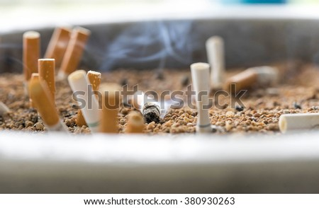 cigarette butts on focus of macro in sand bin - stock photo