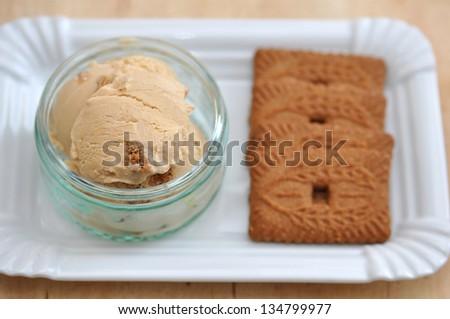 Cinnamon ice cream - stock photo