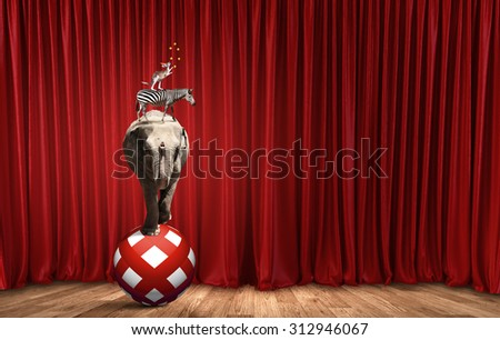 Circus animals standing in stack and balancing on ball - stock photo