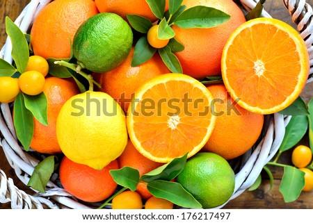 Citrus fruits in rustic background.Fresh oranges, lemon, mandarins, clementines, grapefruits, kumquats. - stock photo