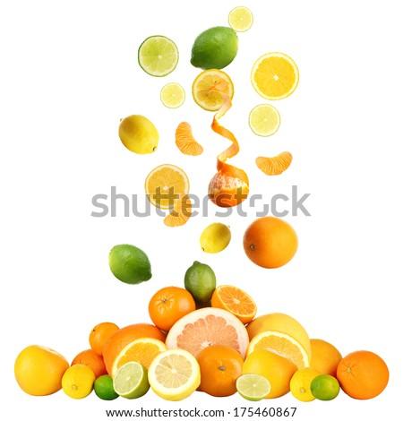 Citrus isolated on white - stock photo