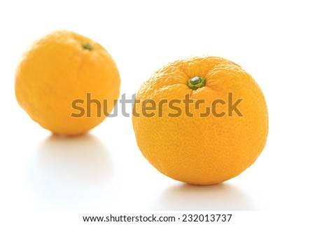 Citrus junos on white background - stock photo