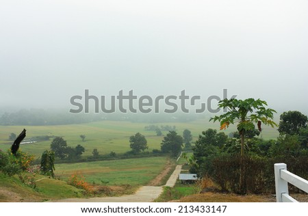 City in the fog at morning. - stock photo