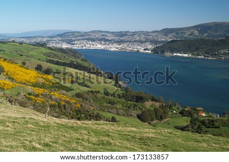 City of  Dunedin, New Zealand - stock photo