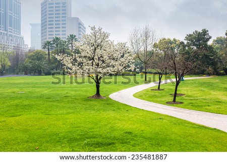 city park in the spring , green lawn field and  curved walk path - stock photo