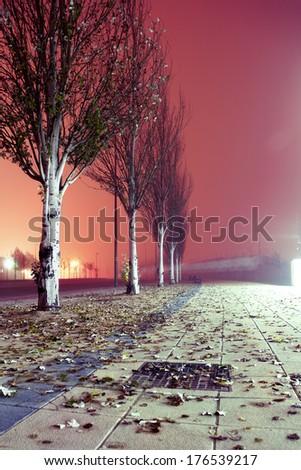 City street at night. Winter image.Foggy sidewalk at night - stock photo