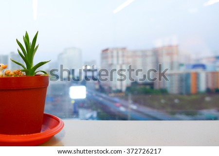 City view with Little Flowerpot at the window in the Office - stock photo
