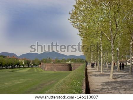 City wall of Lucca. Tuscany - Italy - stock photo