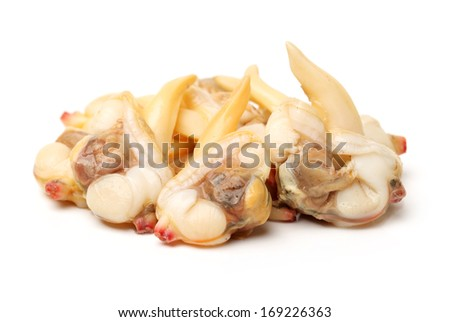 clam meat on white background  - stock photo