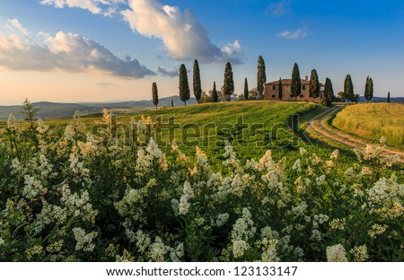 Classic Tuscany view close to Pienza - stock photo