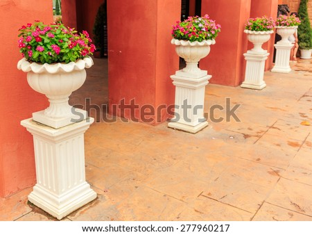 classic white ceramic pot of the colorful flower standing in line with orange wall - stock photo
