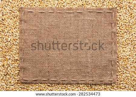 Classical frame on barley grain, with space for your text - stock photo