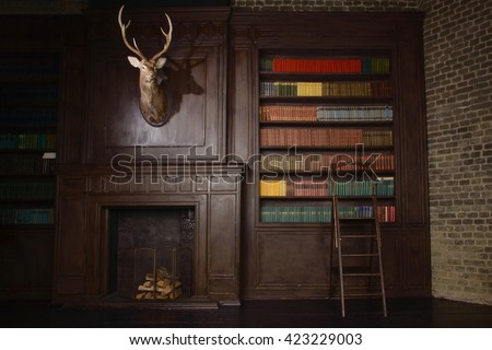 Classical library room with old books on shelves in the victorian style  - stock photo