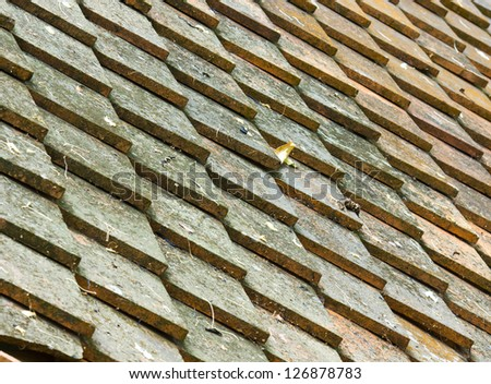 Clay roof - stock photo