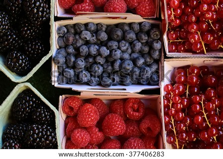 Clean organic natural fresh tasty ripe blackberries blueberries raspberries red currants berries full of vitamin nutrition for sale in paper bags on green background, horizontal picture - stock photo
