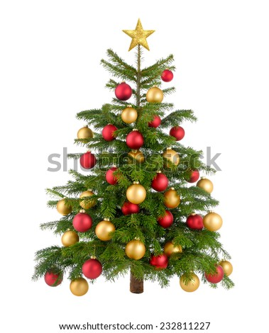 Clean studio shot of a gorgeous natural Christmas tree decorated with red and gold baubles and top star, isolated on white - stock photo