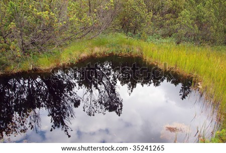Clean water surface - Three Lakes Fen in the Czech Republic - stock photo