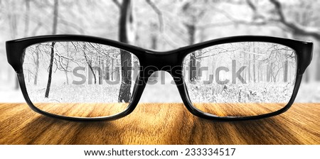Clear forest in glasses on the background of blurred forest  - stock photo