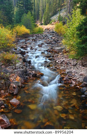 Clear stream flowing through the Lewis and Clark National Forest of Montana - stock photo