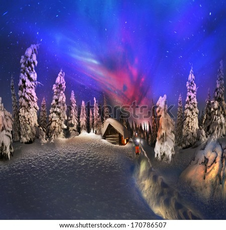 Climbing to tourist wild alpine mountain to an abandoned cabin-in order to illuminate the snow-covered spruce canopy during sunrise, sunset  to see show the first star of Christmas in the Carpathians  - stock photo