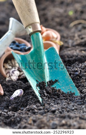 close on shovel planted in soil with seeds in vegetable garden  - stock photo