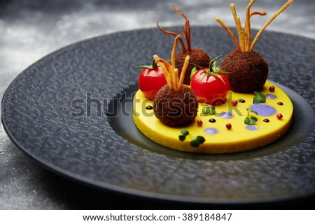 Close up at tasty juicy fried meatballs with tomato on a potatoes in a black plate. Shallow depth of field - stock photo
