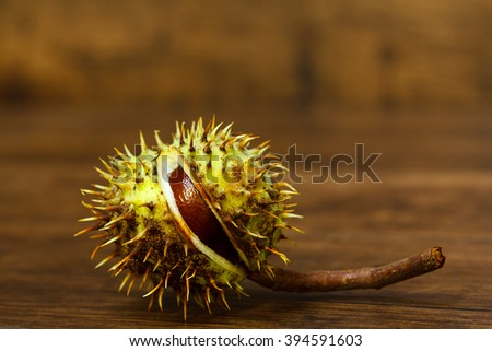Close Up Chestnuts in nutshell isolated on wooden background - stock photo