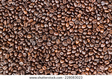 close up coffee beans - stock photo