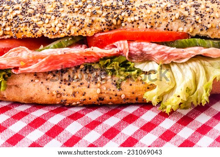 close up detail of a delicious salami sub sandwich over a classic red and white tablecloth - stock photo