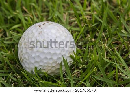Close up dirty golf ball - stock photo
