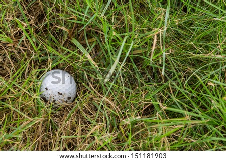 Close up dirty golf ball in rough  - stock photo