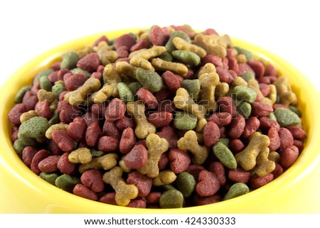 Close Up dogs food - stock photo