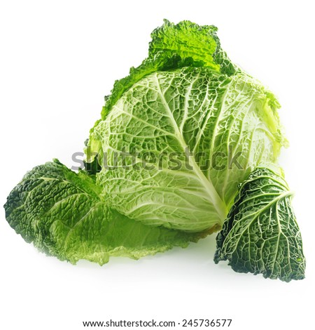 Close up Fresh Green savoy Cabbage Vegetable, with Textured Leaves, Isolated on White Background - stock photo