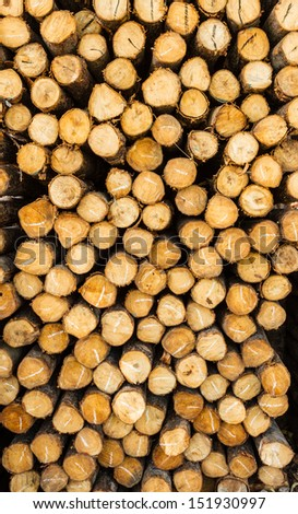 Close up from a pile of wood for sell - stock photo