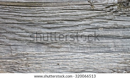 Close up grunge texture of wood, can be used as a background.  - stock photo