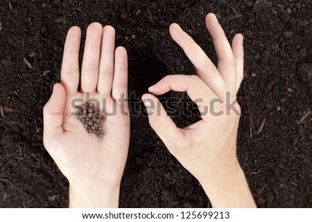 Close-up image of a hand with seeds planting in the soil - stock photo