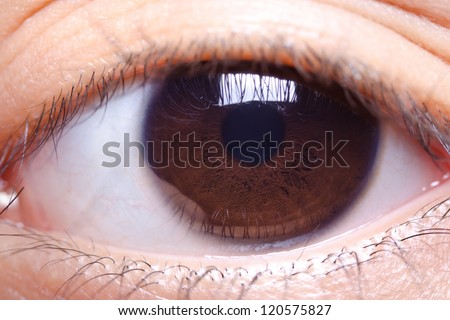 close up image of brown color human eye - stock photo
