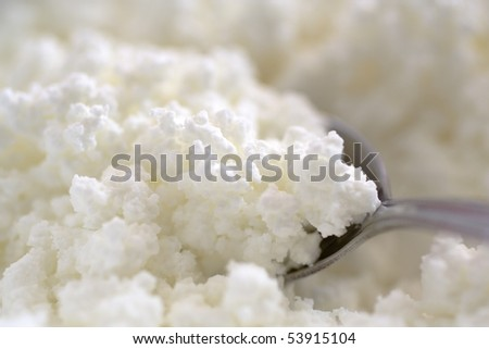 Close-up image of cottage cheese clods - stock photo