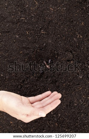 Close-up image of hand sowing seeds into the soil - stock photo