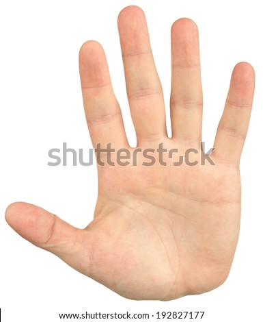 Close-up image of mans hand give a palm hand gesture, isolated on white - stock photo