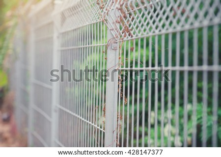 Close up Metal fence, Private property in the forest angle shot.Metal fence, Security fence.Selective focus. - stock photo