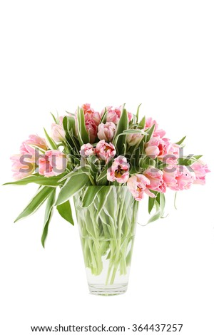 Close-up of a beautiful bouquet of pink tulips in a glass vase. Isolated on white background - stock photo